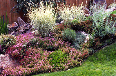 Utah landscaping design ideas pdf for Landscape design utah